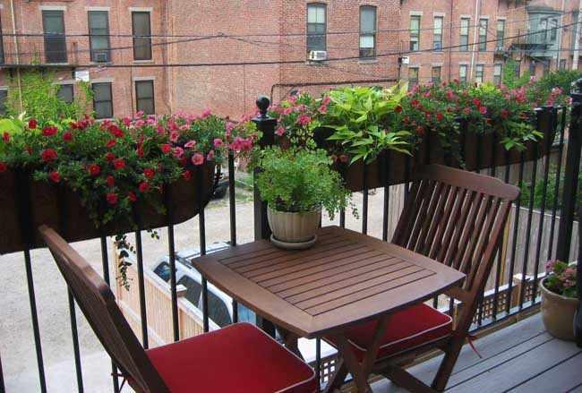 decorar balcon pequeño plantas