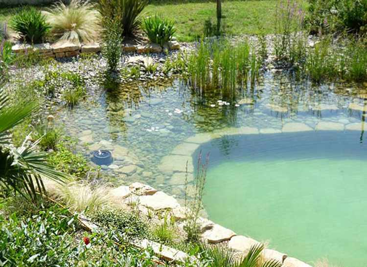 Piscinas naturales para jardin for Albercas naturales
